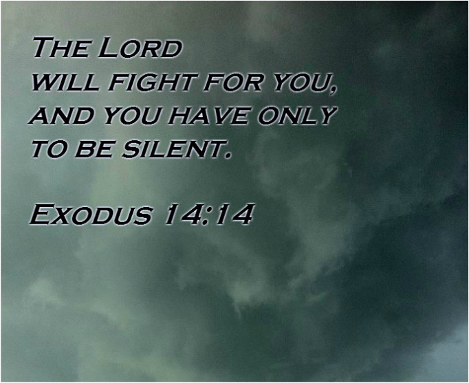 The LORD will fight for you, and you have only to be silent. Exodus 14:14
