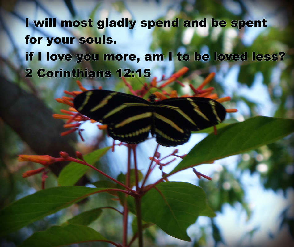 I will most gladly spend and be spent for your souls. If I love you more, am I to be loved less? 2 Corinthians 12:15