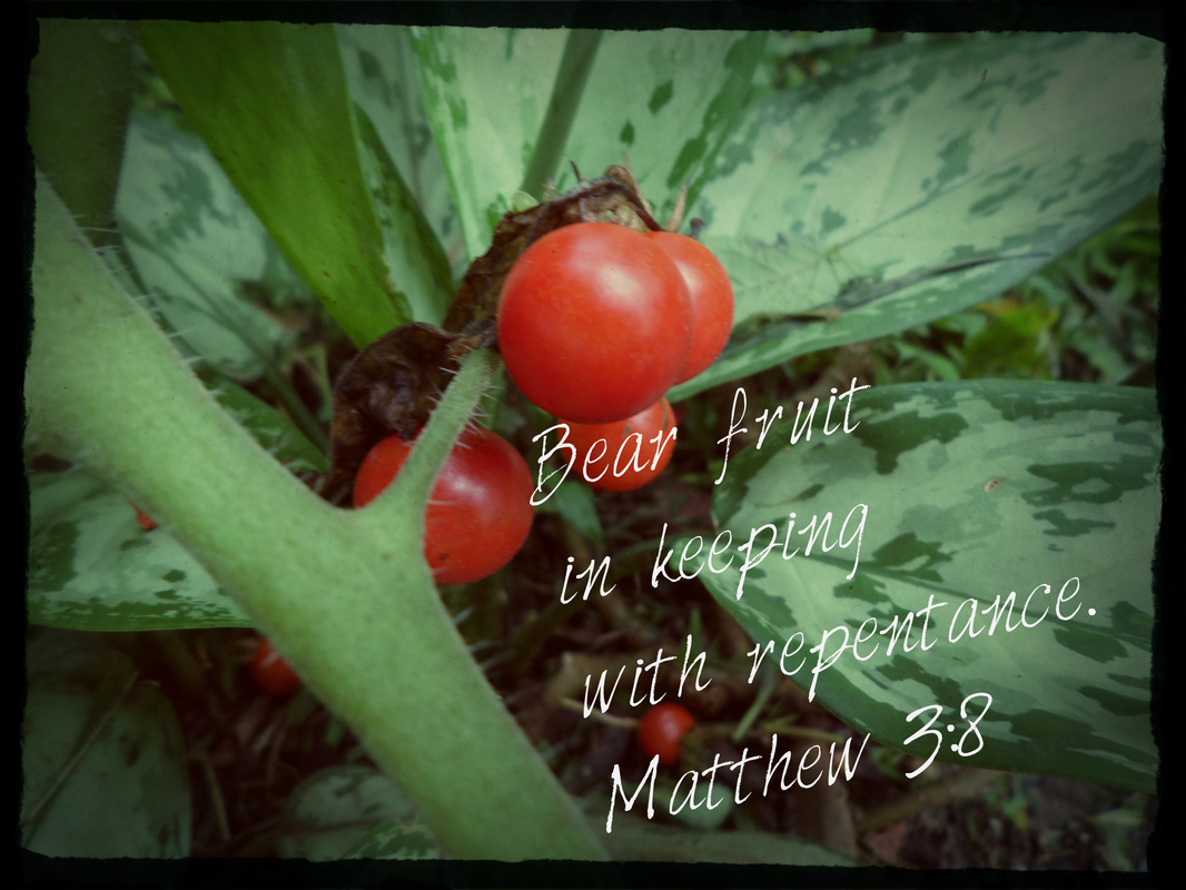 Bear fruit in keeping with repentance. Matthew 3:8