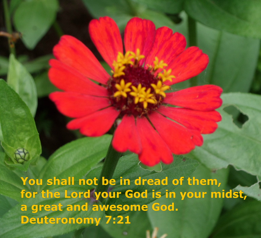You shall not be in dread of them, for the Lord your God is in your midst, a great and awesome God. Deuteronomy 7:21