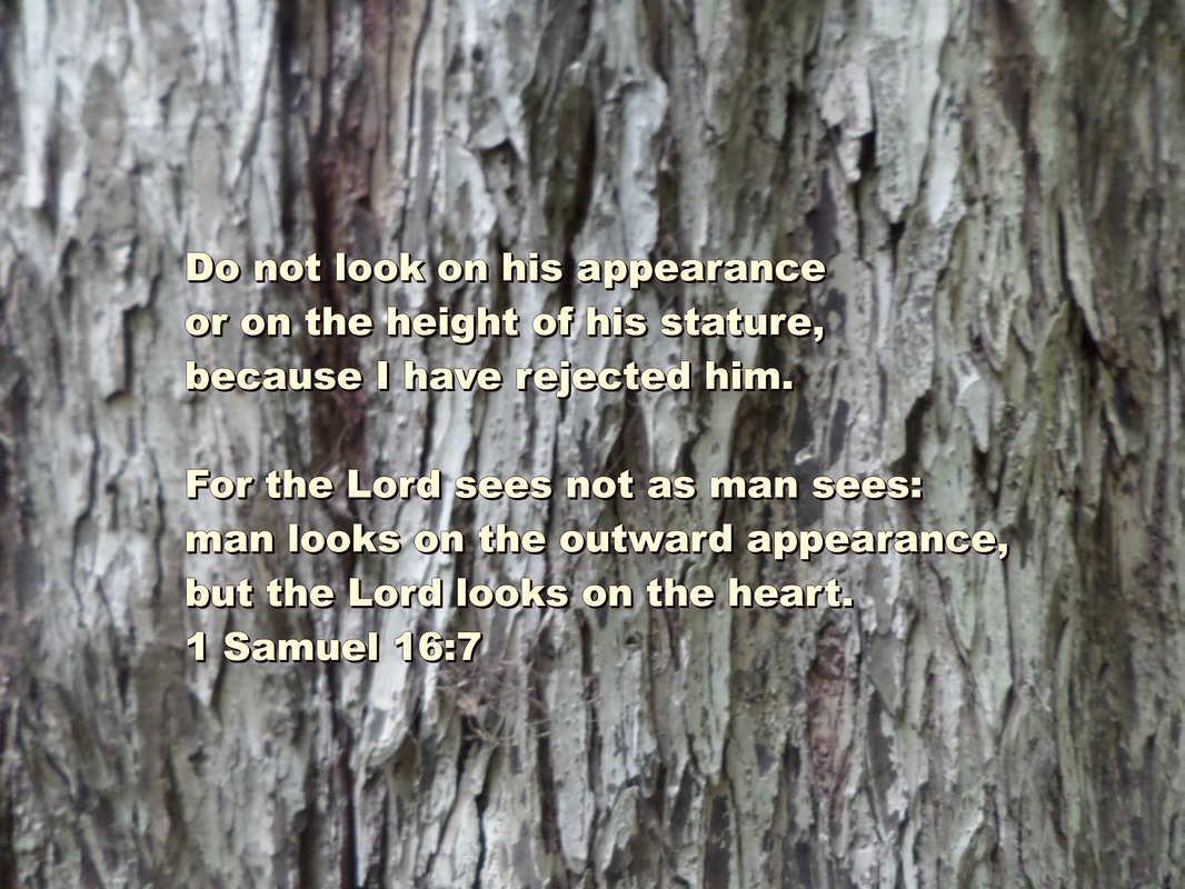 Do not look on his appearance or on the height of his stature, because I have rejected him.  For the Lord sees not as man sees: man looks on the outward appearance, but the Lord looks on the heart. 1 Samuel 16:7