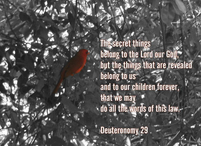 The secret things belong to the Lord our God, but the things that are revealed belong to us and to our children forever, that we may do all the words of this law. Deuteronomy 29