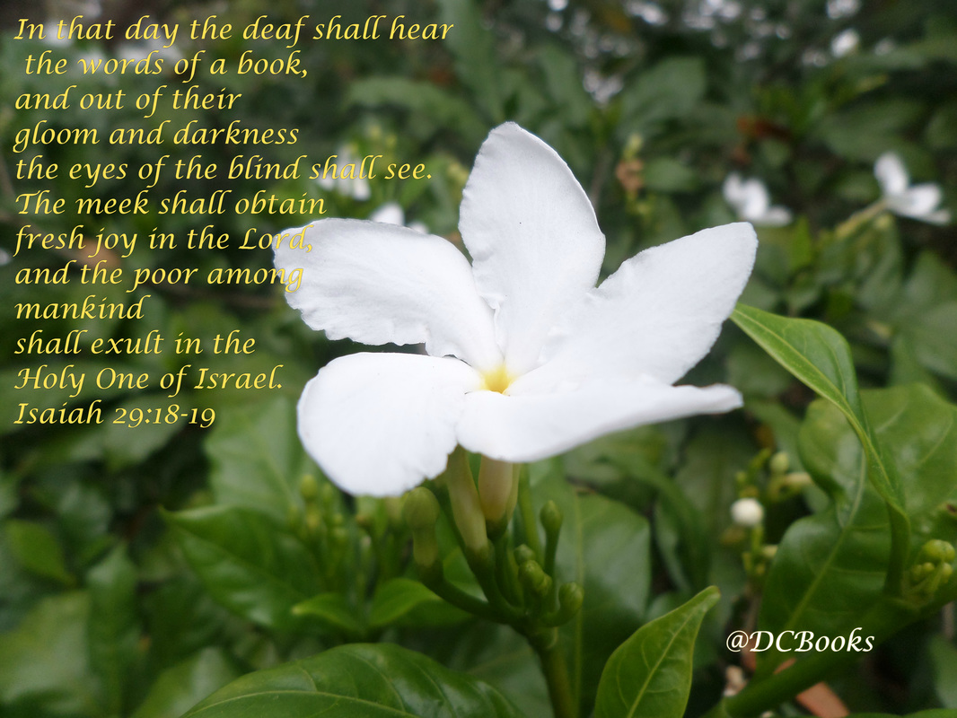 In that day the deaf shall hear the words of a book, and out of their gloom and darkness the eyes of the blind shall see. 19 The meek shall obtain fresh joy in the Lord, and the poor among mankind shall exult in the Holy One of Israel. Isaiah 28:18-19 Photo of white flower by Donna Campbell