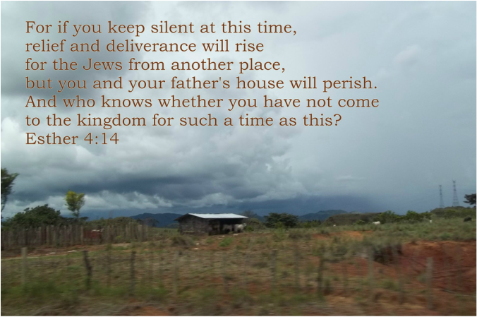 "For if you keep silent at this time, relief and deliverance will rise for the Jews from another place, but you and your father's house will perish. And who knows whether you have not come to the kingdom for such a time as this?"" Esther 4:14"