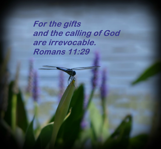 For the gifts and the calling of God are irrevocable. Romans 11:29