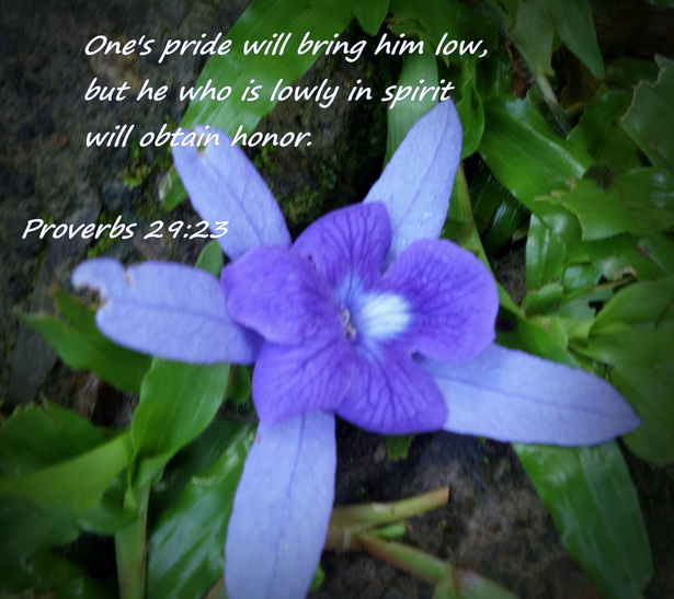 One's pride will bring him low,     but he who is lowly in spirit will obtain honor. Proverbs 29:23
