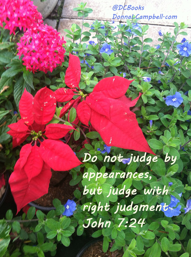 Do not judge by appearances, but judge with right judgment. - John 7:24