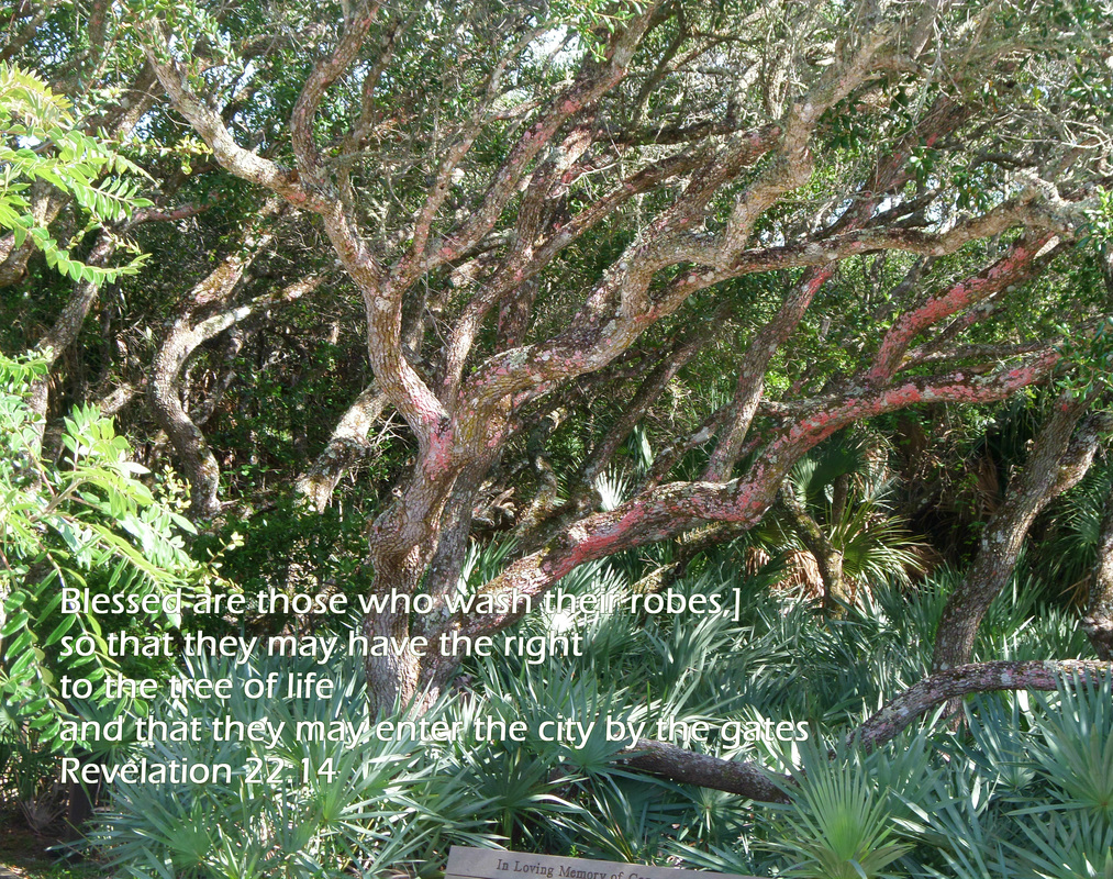 Blessed are those who wash their robes, so that they may have the right to the tree of life and that they may enter the city by the gates. Revelation 22:14