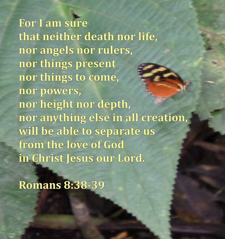 For I am sure that neither death nor life, nor angels nor rulers, nor things present nor things to come, nor powers, nor height nor depth, nor anything else in all creation, will be able to separate us from the love of God in Christ Jesus our Lord. Romans 8:38-39