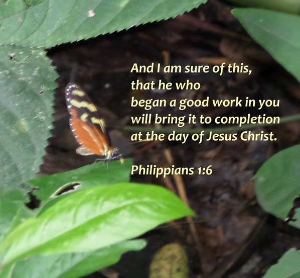 And I am sure of this, that he who began a good work in you will bring it to completion at the day of Jesus Christ. Philippians 1:6
