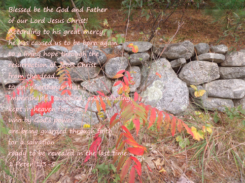1 Peter 1:3-5 on photo by Donna Campbell