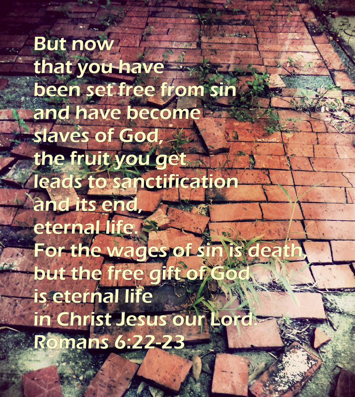 But now that you have been set free from sin and have become slaves of God, the fruit you get leads to sanctification and its end, eternal life. For the wages of sin is death, but the free gift of God is eternal life in Christ Jesus our Lord. Romans 6:22-23 On photo of Broken Brick Path by Donna Campbell