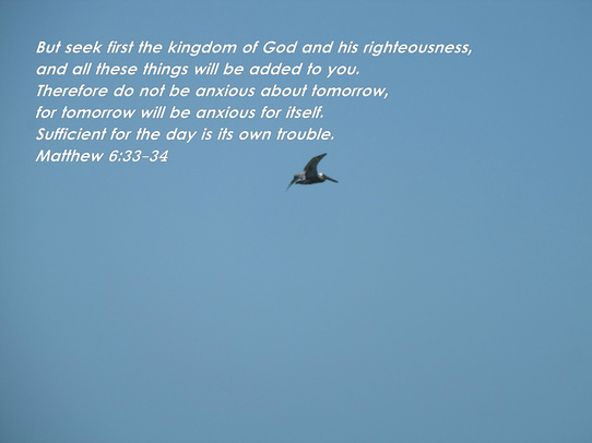 But seek first the kingdom of God and his righteousness, and all these things will be added to you. Therefore do not be anxious about tomorrow, for tomorrow will be anxious for itself. Sufficient for the day is its own trouble. Matthew 6:33-34 on photo of  Pelican Flying in Blue Sky by Donna Campbell