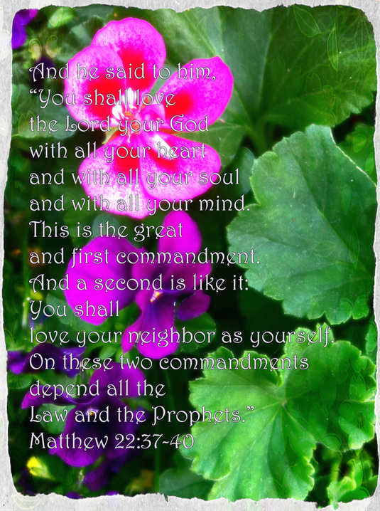 The Royal Laws Matthew 22:37-40 on photo of Pansies by Donna Campell
