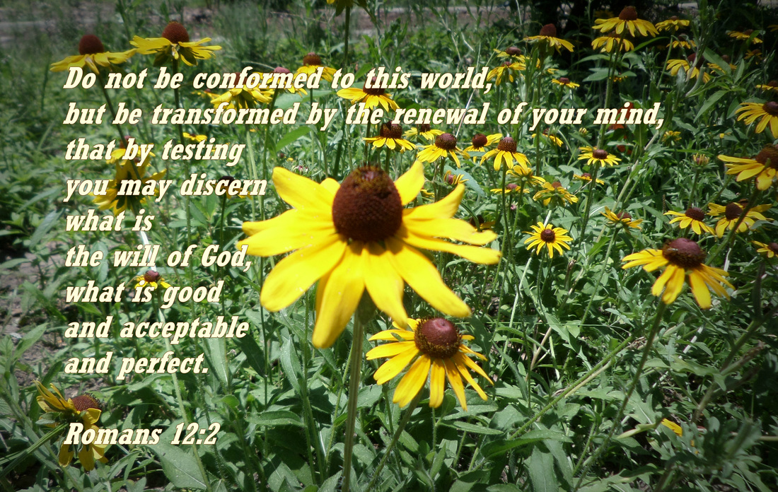 Do not be conformed to this world, but be transformed by the renewal of your mind, that by testing you may discern what is the will of God, what is good and acceptable and perfect. Romans 12:2