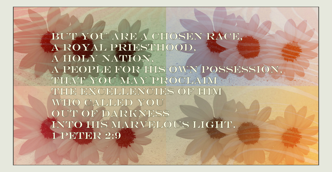 But you are a chosen race, a royal priesthood, a holy nation, a people for his own possession, that you may proclaim the excellencies of him who called you out of darkness into his marvelous light. 1 Peter 2:9
