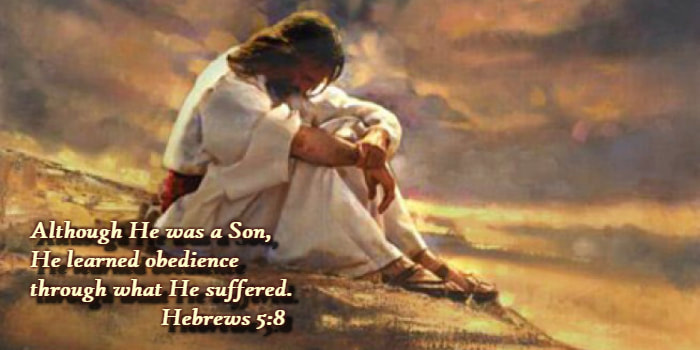Although he was a Son, He learned obedience through what He suffered. Hebrews 5:8