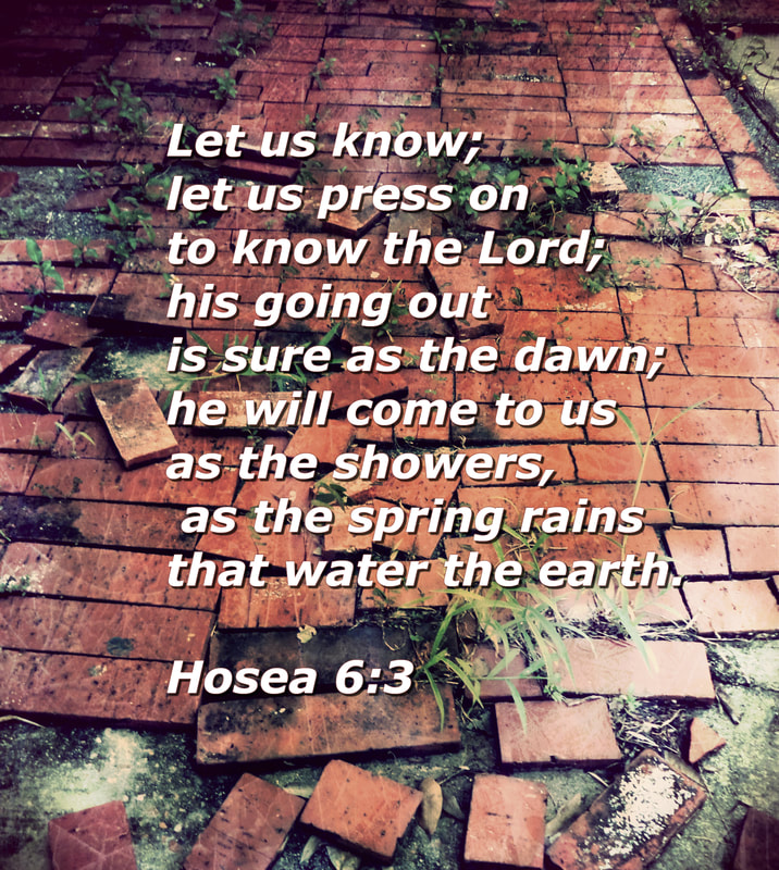 Let us know; let us press on to know the Lord;     his going out is sure as the dawn; he will come to us as the showers,     as the spring rains that water the earth. Hosea 6:3