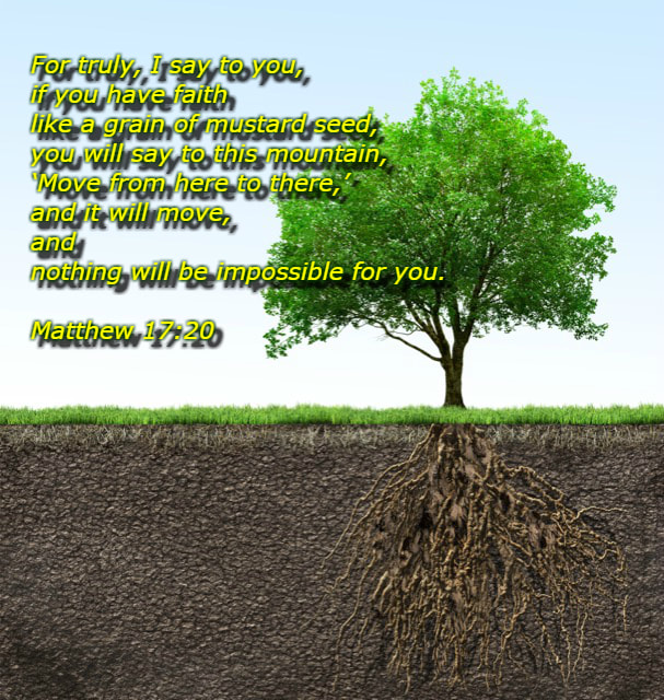 "He said to them, ""Because of your little faith. For truly, I say to you, if you have faith like a grain of mustard seed, you will say to this mountain, 'Move from here to there,' and it will move, and nothing will be impossible for you."" Matthew 17:20 on photo of Mustard Tree"