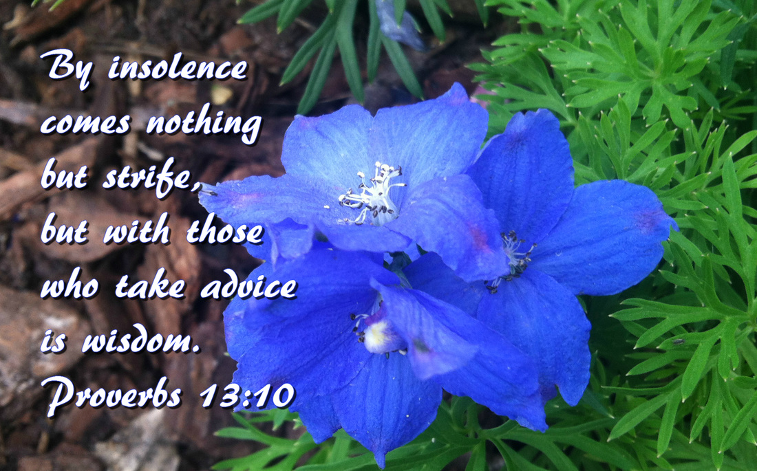 By insolence comes nothing but strife,     but with those who take advice is wisdom. Proverbs 13:10