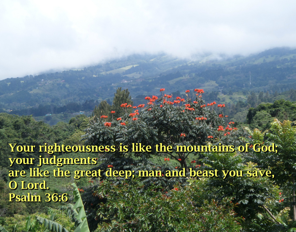 Your righteousness is like the mountains of God; your judgments are like the great deep; man and beast you save, O Lord. Psalm 36:6