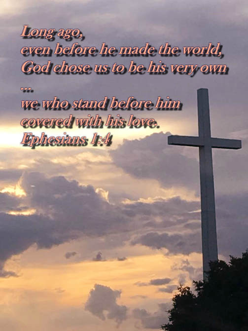 Long ago, even before he made the world, God chose us to be his very own through what Christ would do for us; he decided then to make us holy in his eyes, without a single fault--we who stand before him covered with his love. Ephesians 1:4