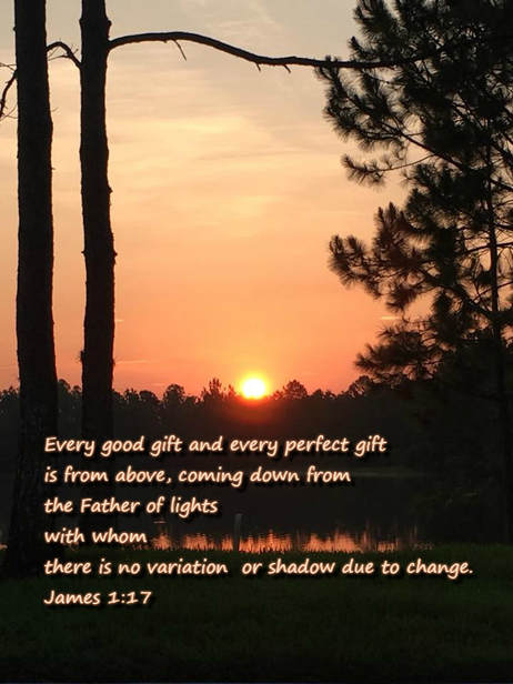 Every good gift and every perfect gift is from above, coming down from the Father of lights with whom there is no variation or shadow due to change. James 1:17 photo by Lani Campbell